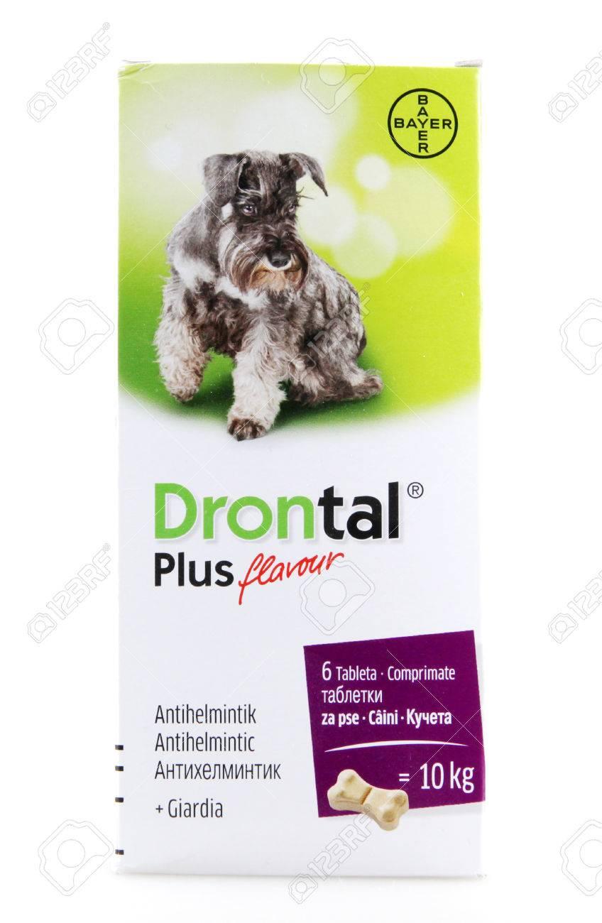 Drontal Plus tabetta 35kg felett 2x