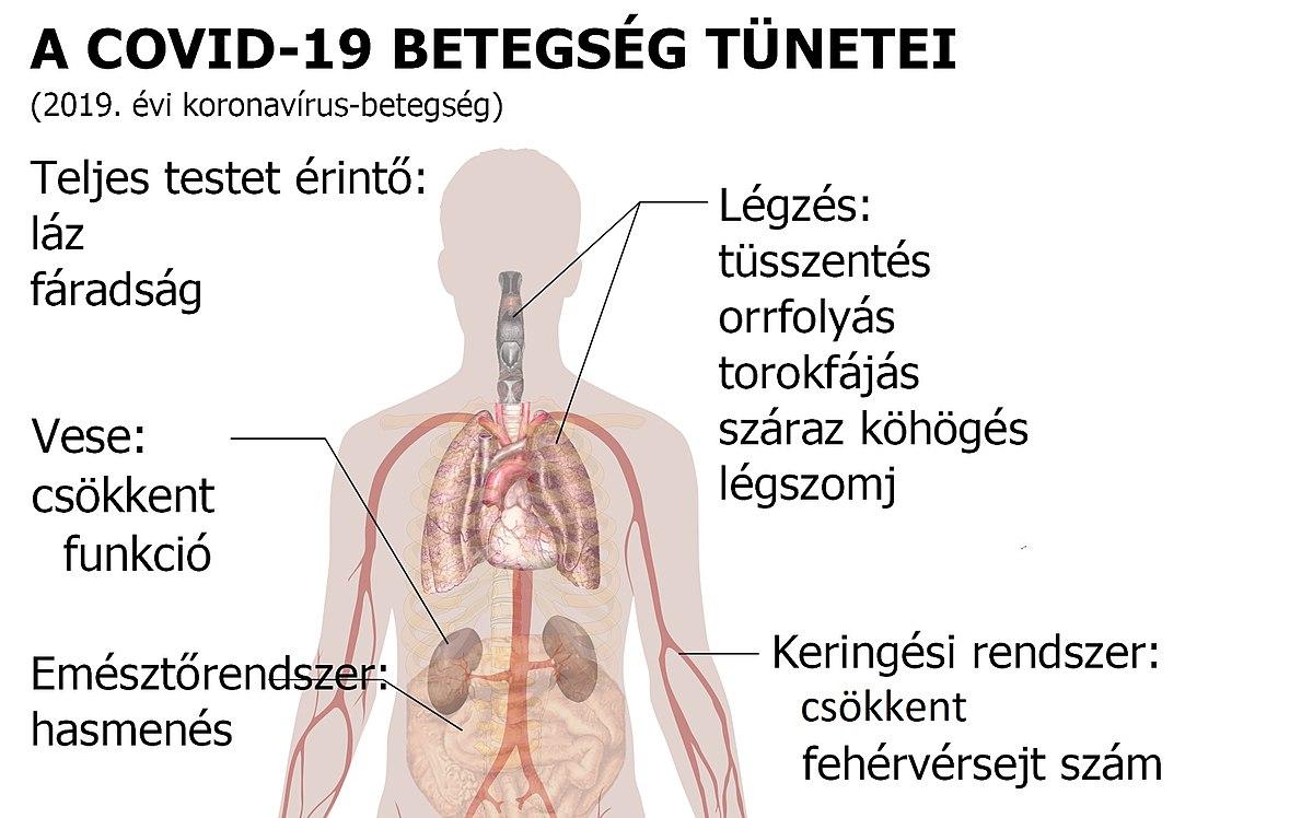 köhögés paraziták tünetei kezelése