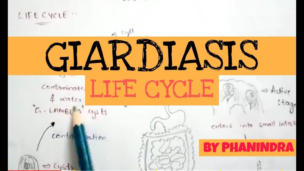 Giardiasis megnyilvánulása a bőrön - rays.hu