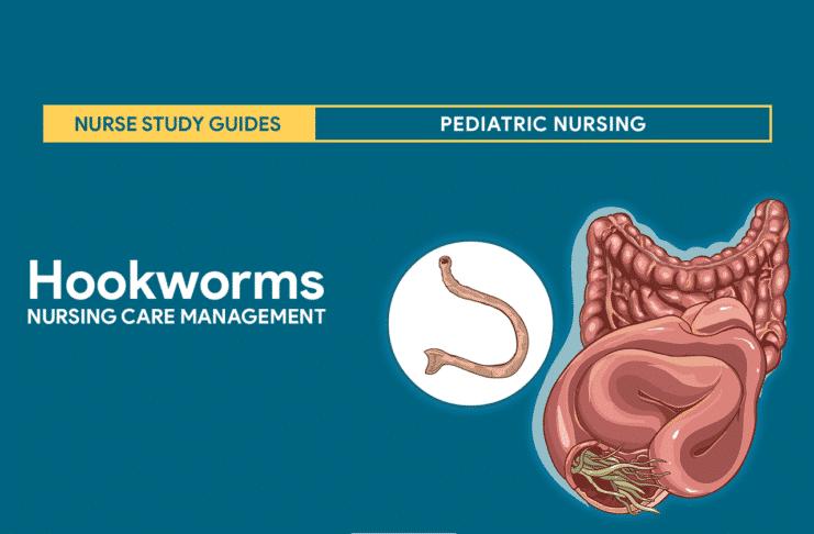 Decaris enterobiosis ellen pinworms - Nők - Enterobiosis hogyan lehet elkészíteni