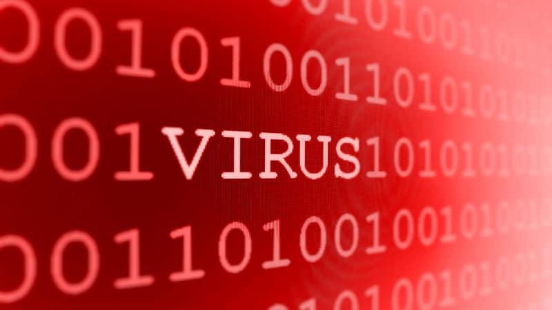 fergek virus krónikus pinworms