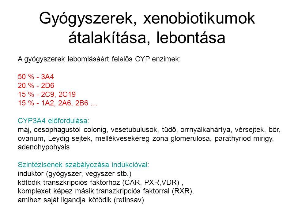 xenobiotikus méregtelenítő biokémia)