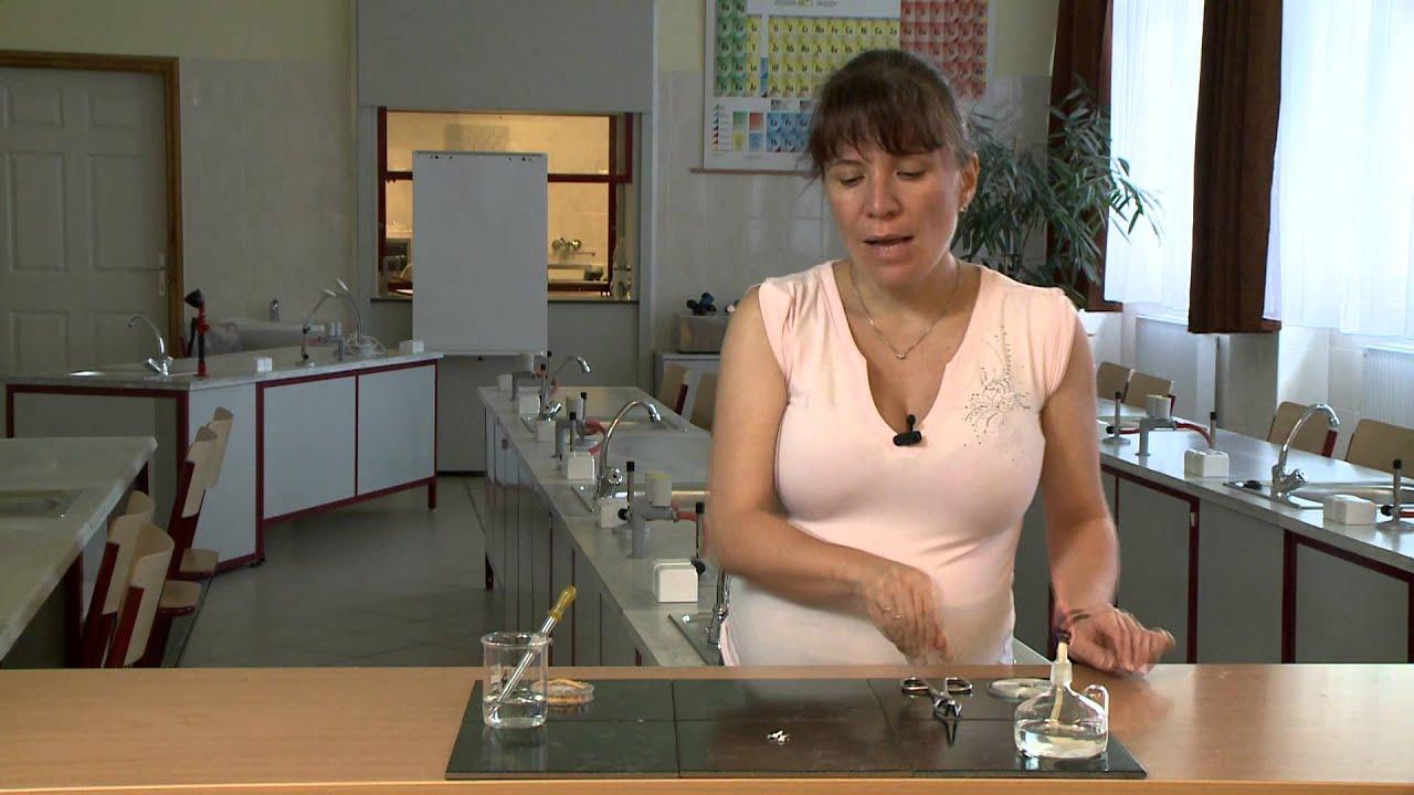 a test reakciója a parazitakezelésre)