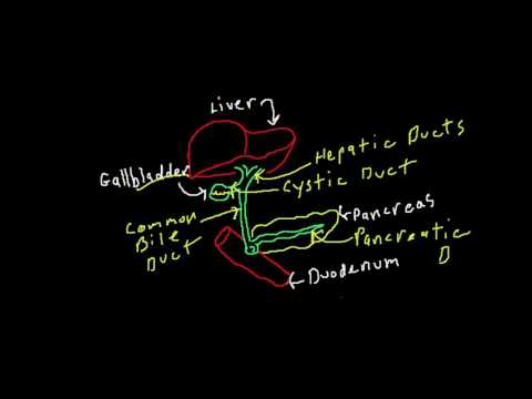 a diphyllobothriasis prevalenciája