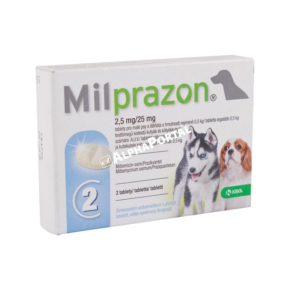 Féreghajtó kutyáknak akár 15% kedvezménnyel | desperados.hu