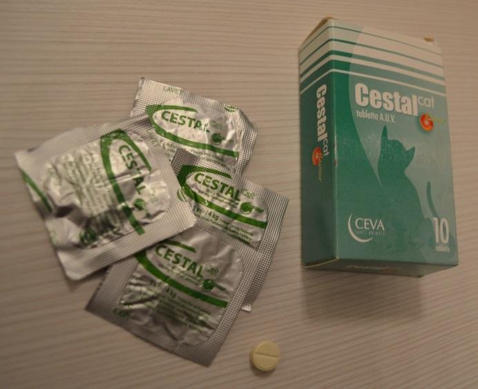 férgek gyógyszer megelőzés céljából