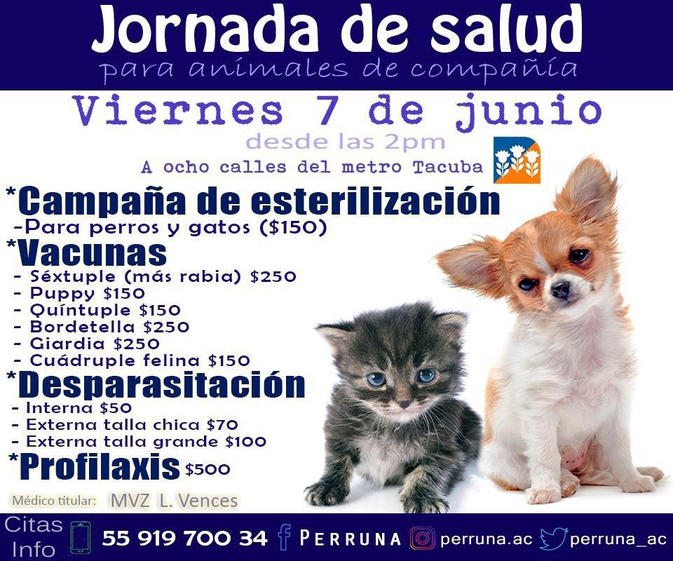 vacuna giardia para perros precio