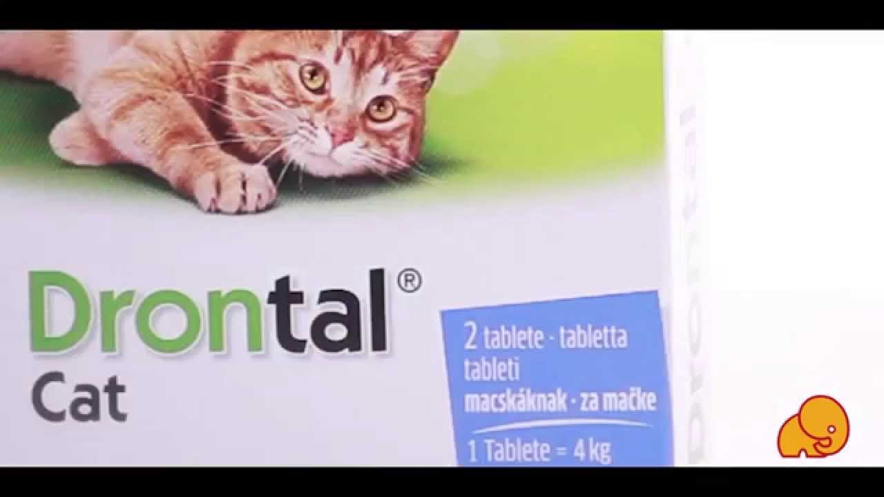 féreg elleni gyógyszer 3