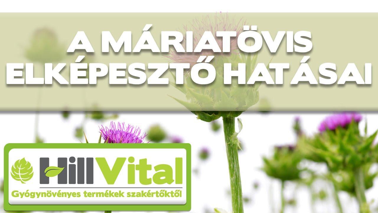 gyógynövények tablettákban férgek számára)