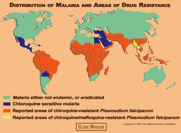 Plasmodium malária és annak életciklusa - Megelőzés