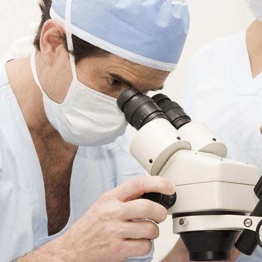 Az ureaplasma a norma a férfiakban