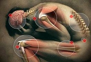 férgek tüdő tünetei és kezelése