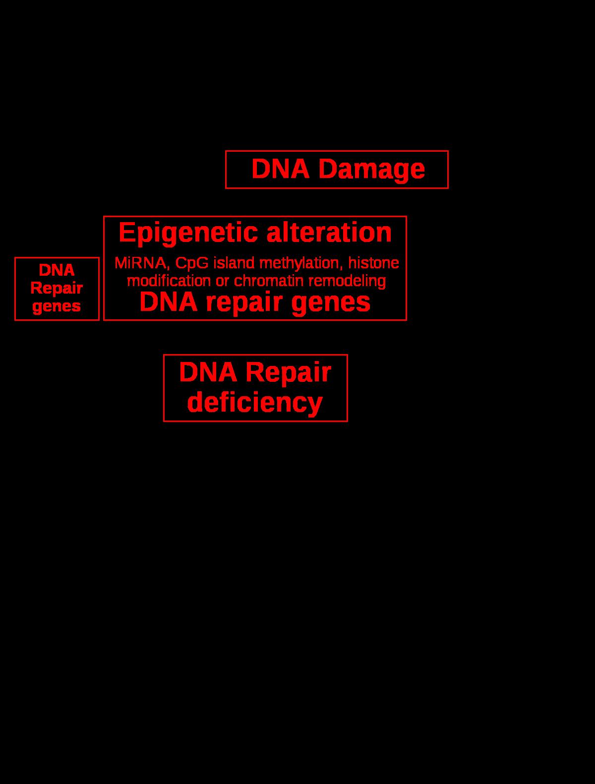 Enterobiosis Rospotrebnadzor - rays.hu
