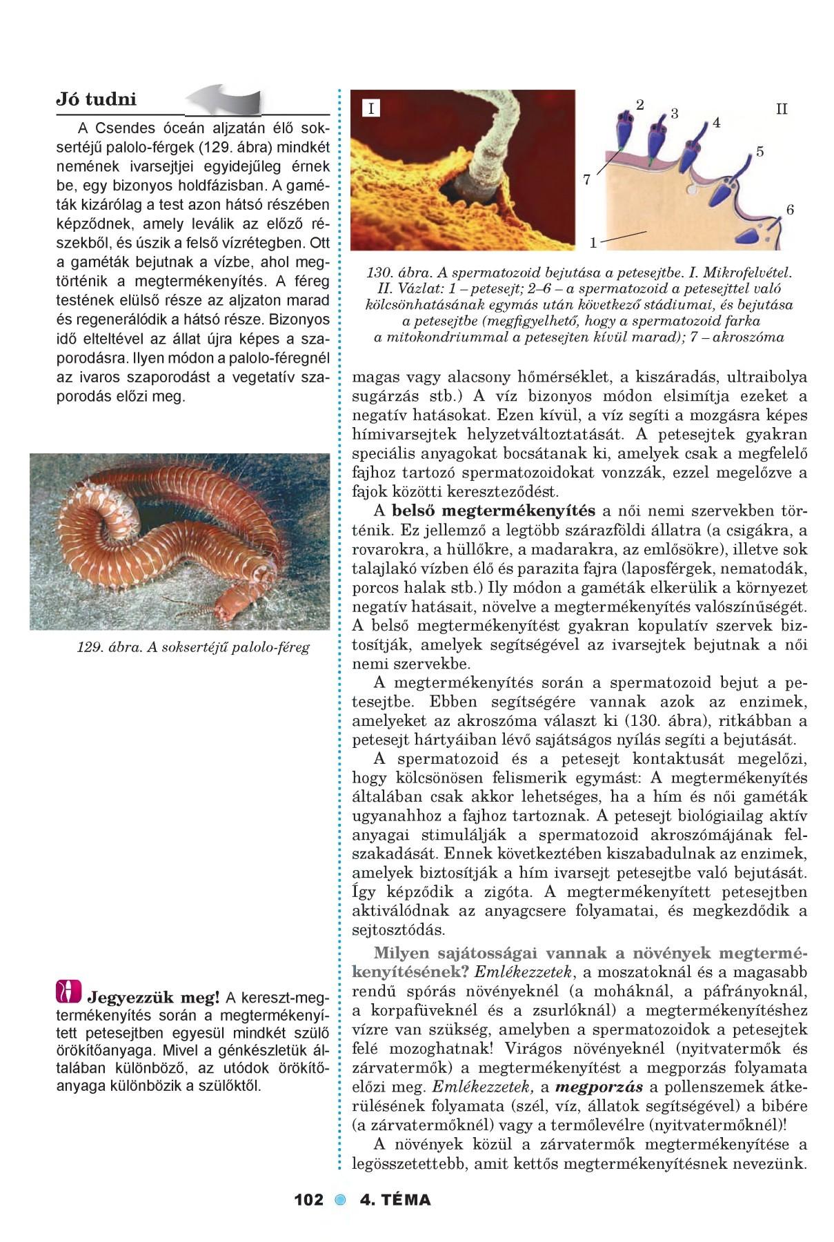 BIO-LOGIA: Parazita férgek