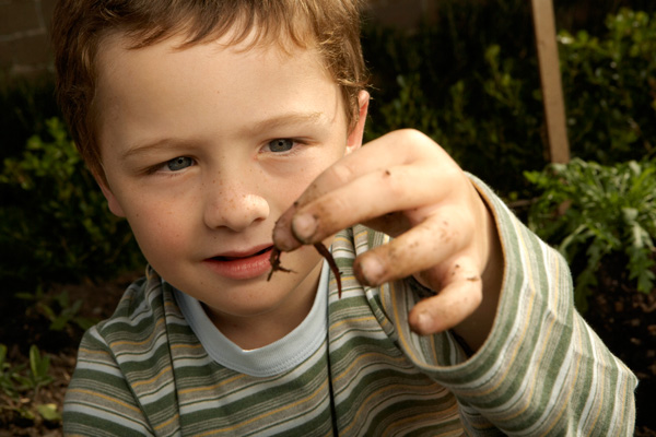 a pinworms átvitelre kerül köhögés hogyan lehet férgek kezelni