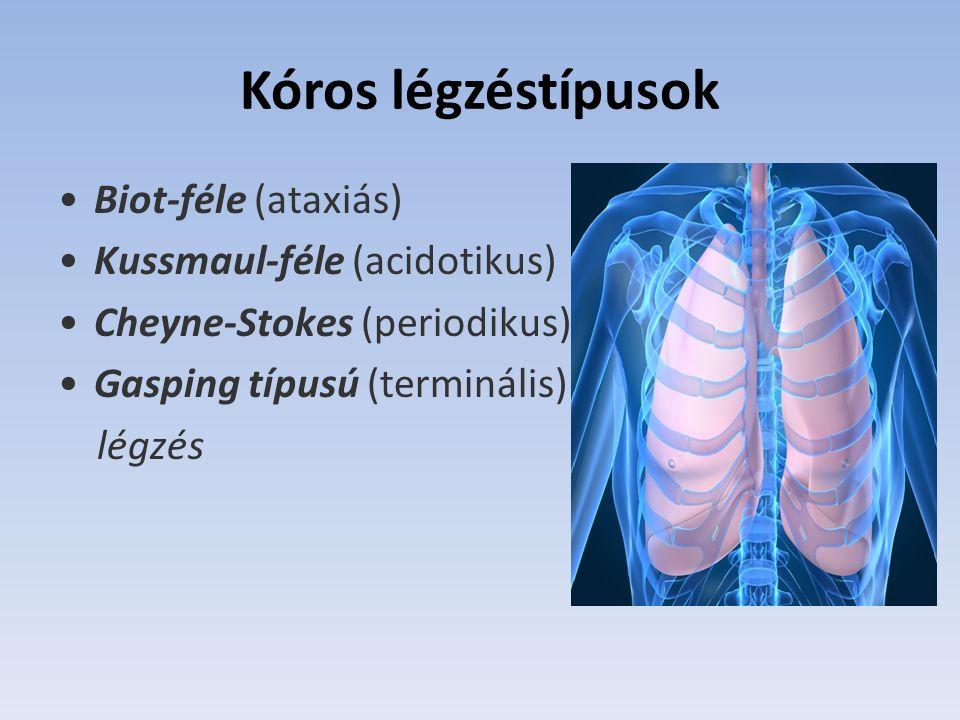 típusú légzés