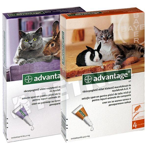 cestal féreghajtó macskáknak)