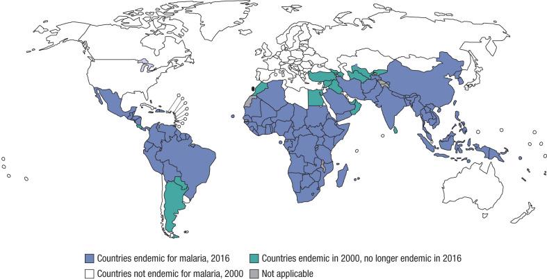 malária plazmodium mikro és makrogametocitái)