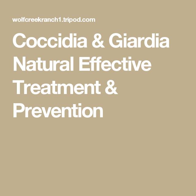 giardia and coccidia natural treatment
