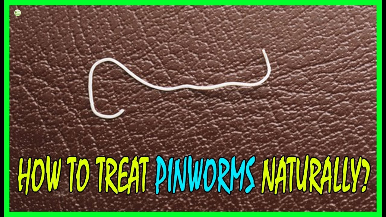 pinworms kórokozók