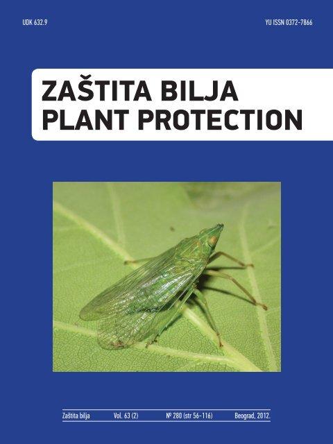 berry bug saprotroph vagy parazita