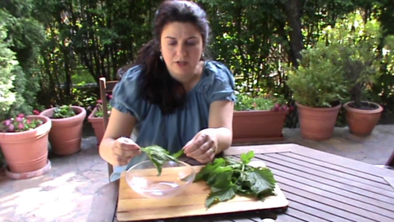 gyógynövények parazitaellenes vélemények)