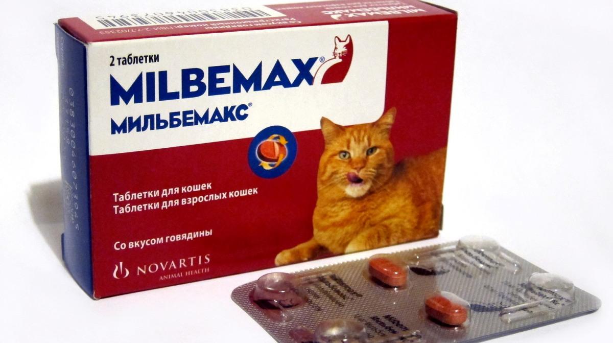 kerekféreg tabletta ember számára