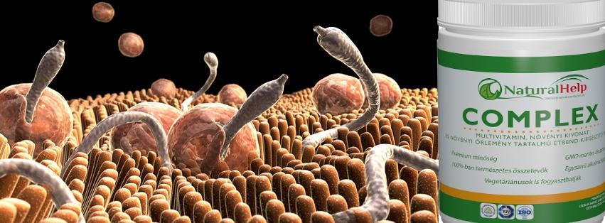 A parazita testének tisztítására szolgáló eszköz, Nyirok tisztítása a parazitáktól