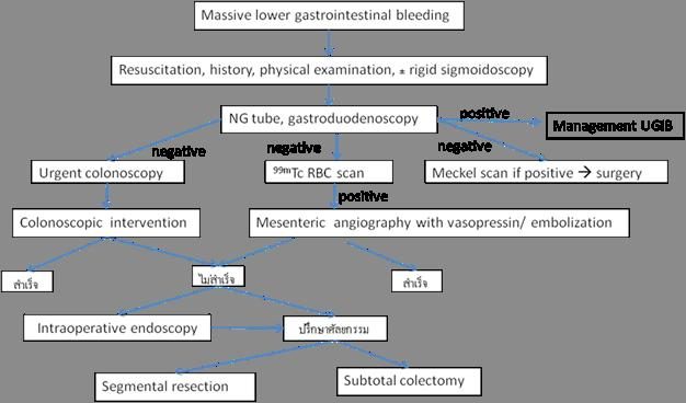 cdl enterobiosis)