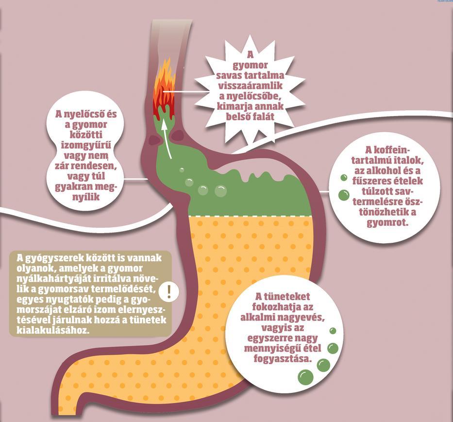 böfögés és rossz lehelet megmérgezzük a férgeket népi gyógyszerekkel