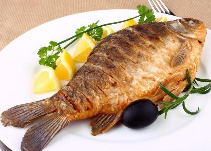 Megdöbbentő tények a halról!