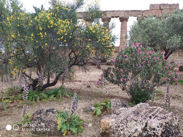 Adria Tours Kft - Sporting Baia - Olaszország - Szicília - Messina - Giardini Naxos
