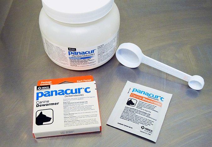 giardiasis antibiotics)