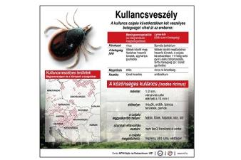 parazita terjedési útvonalak)