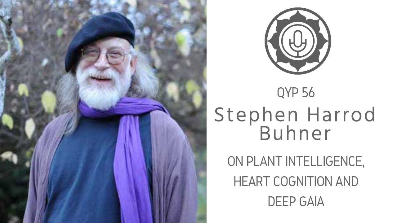 Stephen Buhner paraziták)