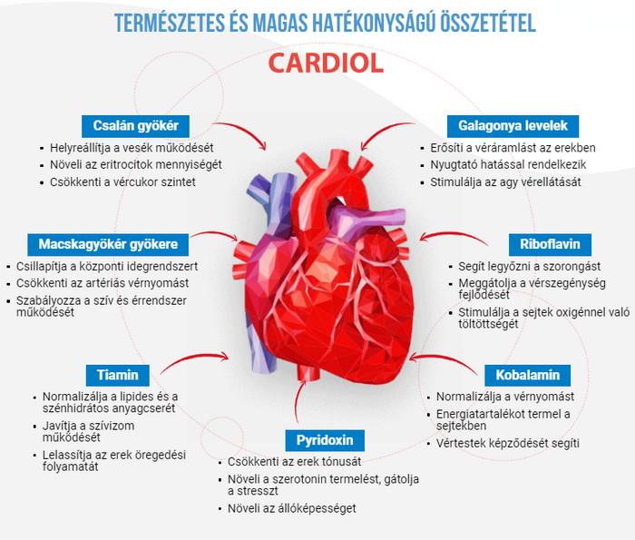 gyógyszer az ér teljes vérnyomásának megtisztítására