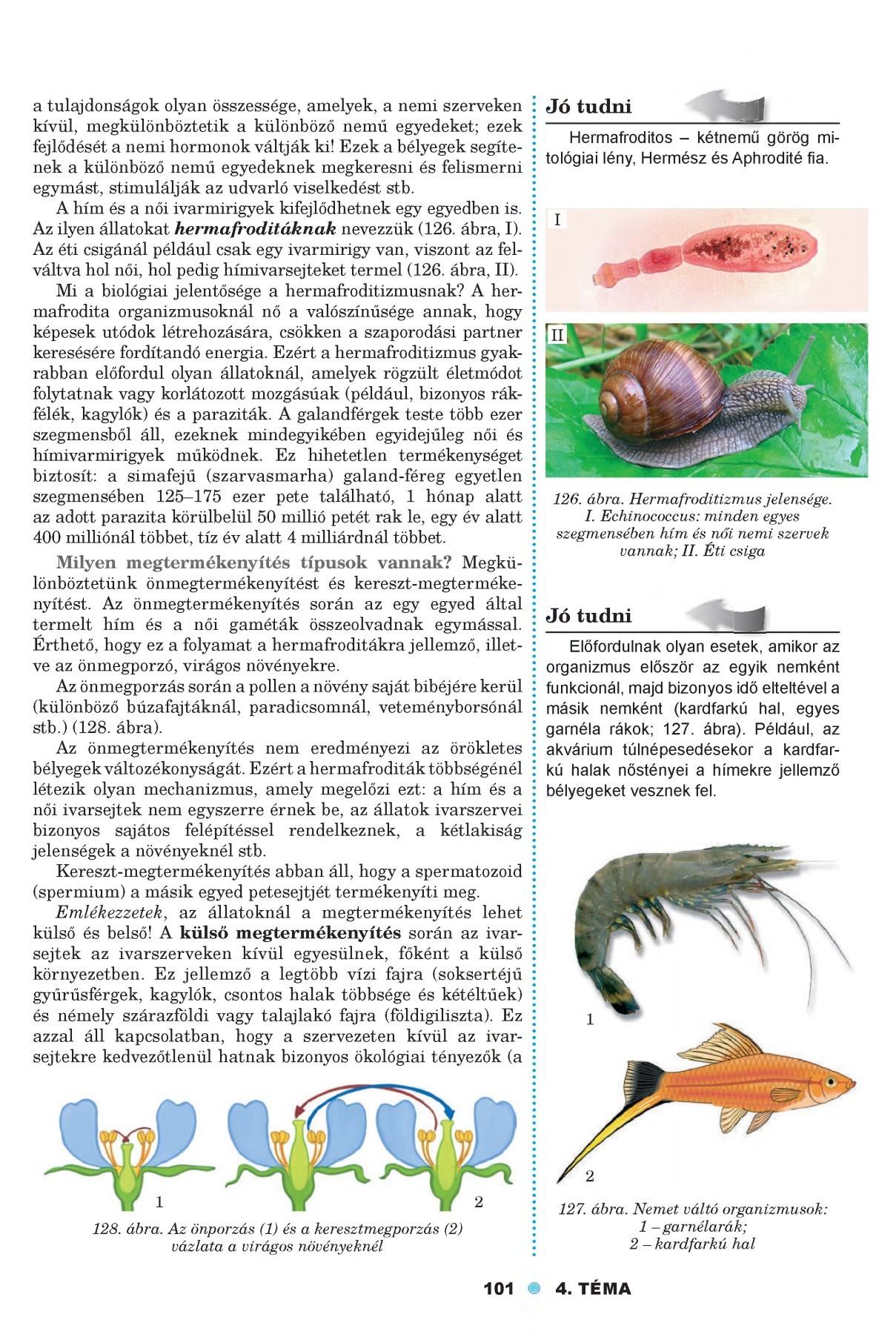 az organizmusok paraziták biológia