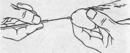 sok leukocita található az ember kenetében lehet e megszabadulni a parazitáktól dekarival