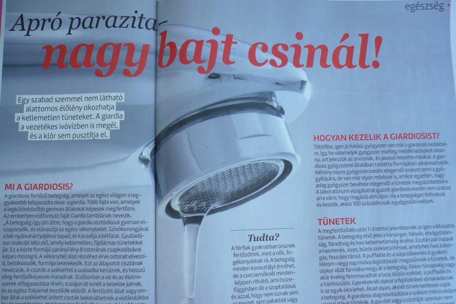 A Giardia paraziták tünetei és kezelése