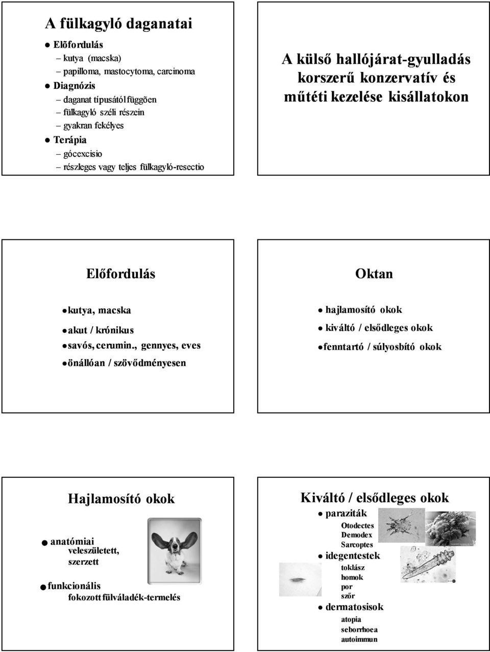 papillómák és paraziták alternatív kezelése