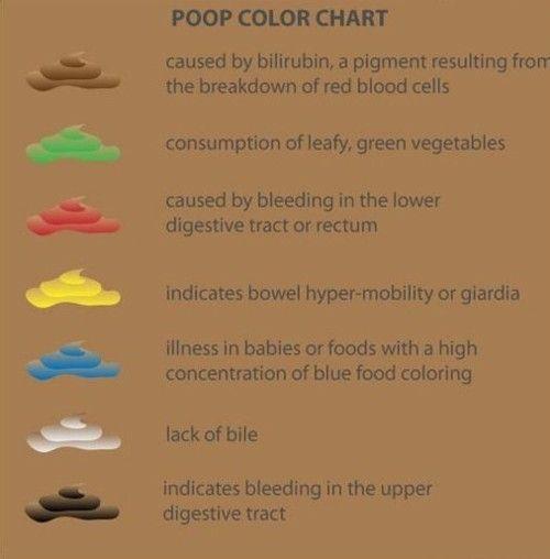 giardia baby poop)