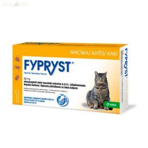 gyógymódok minden típusú antibakteriális parazitához)