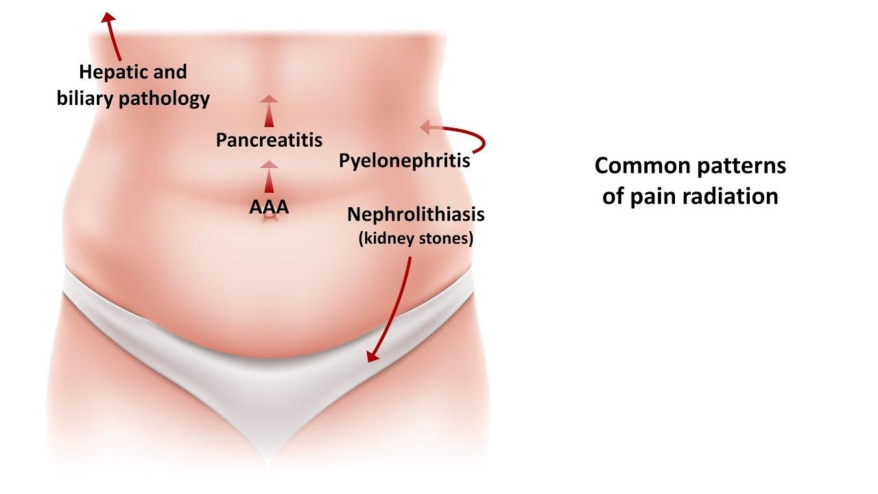 meddig tart a pinworms a kezelés után
