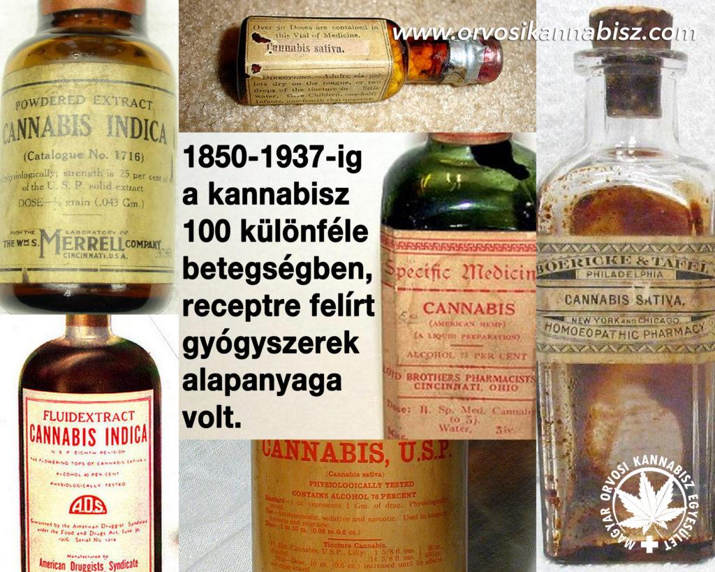 orvosi áttekintés a mérgezésről