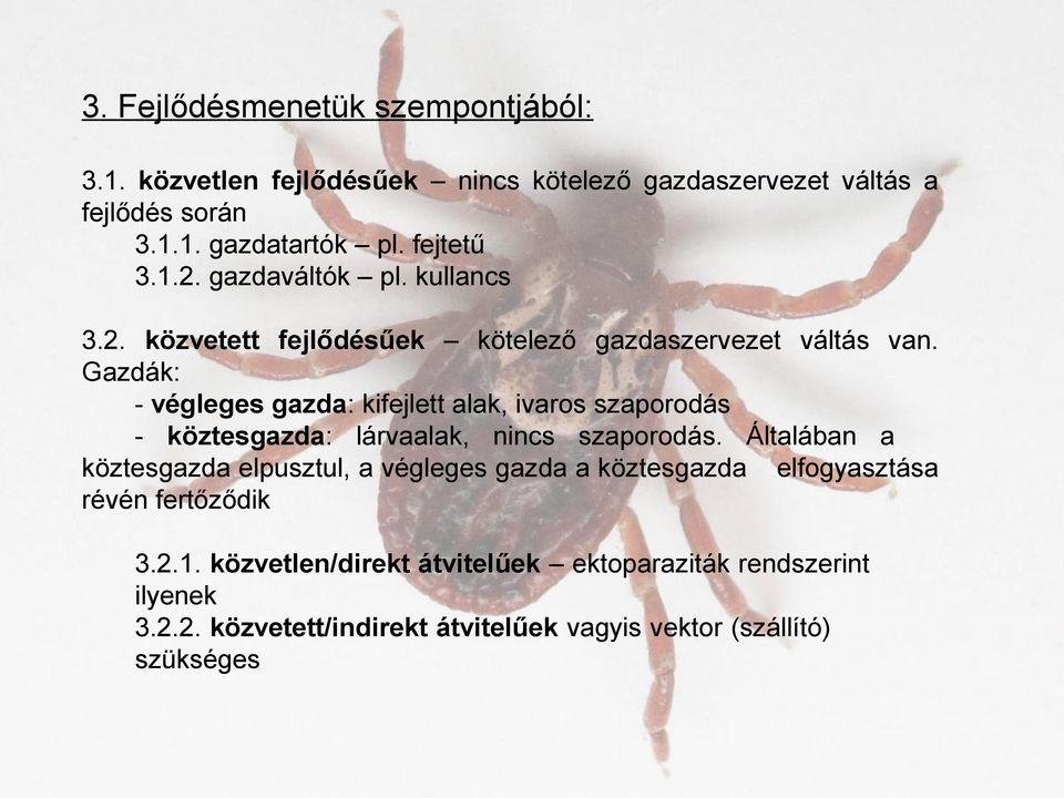 paraziták közbenső gazdaszervezet ember)