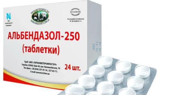 tabletták férgeknek gyermekeknek és felnőtteknek